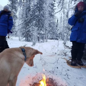 Instagram-Aurora-Village-snowshoe-culture-experience-yellowknife-northwest-territories-capivated-fire